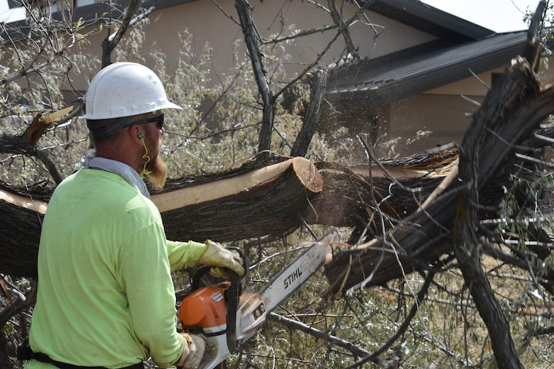 Randy Rohwer, a base grounds maintenance contractor, cuts a tree on the installation's east side.