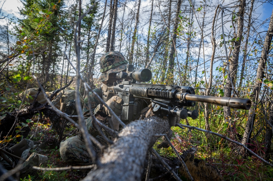A U.S. Marine sights in with an M110 Semi-Automatic Sniper System during a free-fall insert at Eielson Air Force Base, Alaska, Aug. 21.