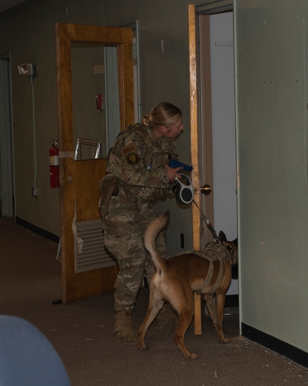 The Airman conducts a secondary sweep with K-9 dog as part of the active shooter exercise.