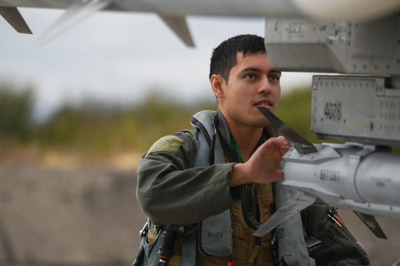 A U.S. Air Force pilot from the 555th Fighter Squadron, Aviano Air Base, Italy, performs a pre-flight check on a U.S. Air Force F-16 Fighting Falcon at Graf Ignatievo Air Base, Bulgaria, Sept. 21, 2020. This exercise required all levels of a squadron to deploy small teams of Airmen and aircraft for a short amount of time to hone their skills. Thracian Viper 20 also enhanced their ability to rapidly deploy to a remote location, establish command and control and deliver lethal airpower more effectively and efficiently anywhere in the world. (U.S. Air Force photo by Airman 1st Class Ericka A. Woolever)