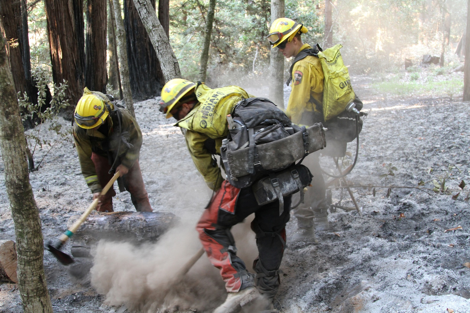 U.S. Army soldiers from the California Army National Guard's Task Force Rattlesnake out of Redding, California, put out a fire Sept. 1, 2020, near Scott's Valley, California, during the CZU Lightning Complex Fire in Santa Cruz and San Mateo counties. DLA Troop Support's Clothing and Textiles team provided more than 700 boots to the Army National Guard as of Sept. 17, 2020 in support of mobilized firefighters combating West Coast wildland fires.