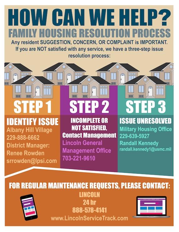 Albany Housing Resolution Flyer