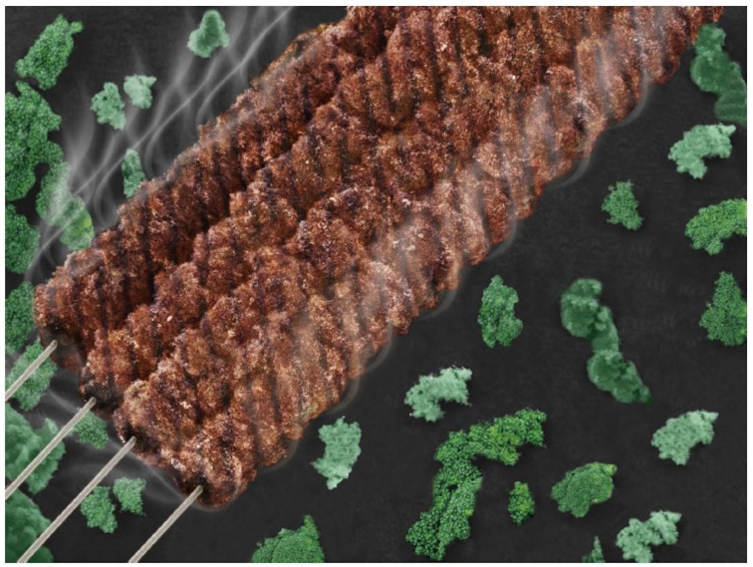 Carbon Nano Shish Kabob. This science as art piece is created by the scanning electron microscope image. Carbon nanotubes were deposited on carbon fibers via chemical vapor deposition method. The overgrowth of carbon nanotubes on carbon fibers created the shish kabob like carbon nanostructure. (Courtesy photo/Yixin Ren)