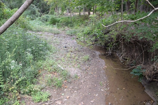 Unnamed Tributary in Coal Hollow Park