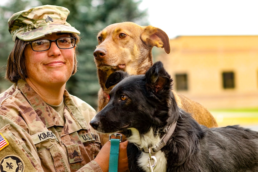 A soldier smiles at the camera next to a brown dog and a black dog.