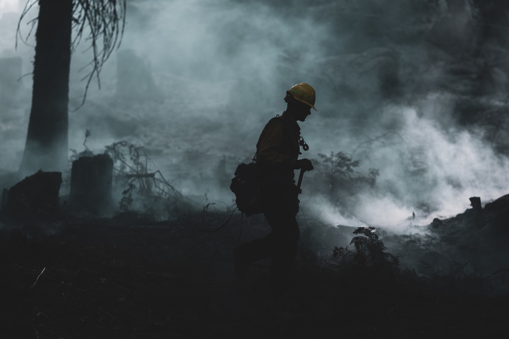 A silhouette of a Marine walking through gray smoke in a burned forest.