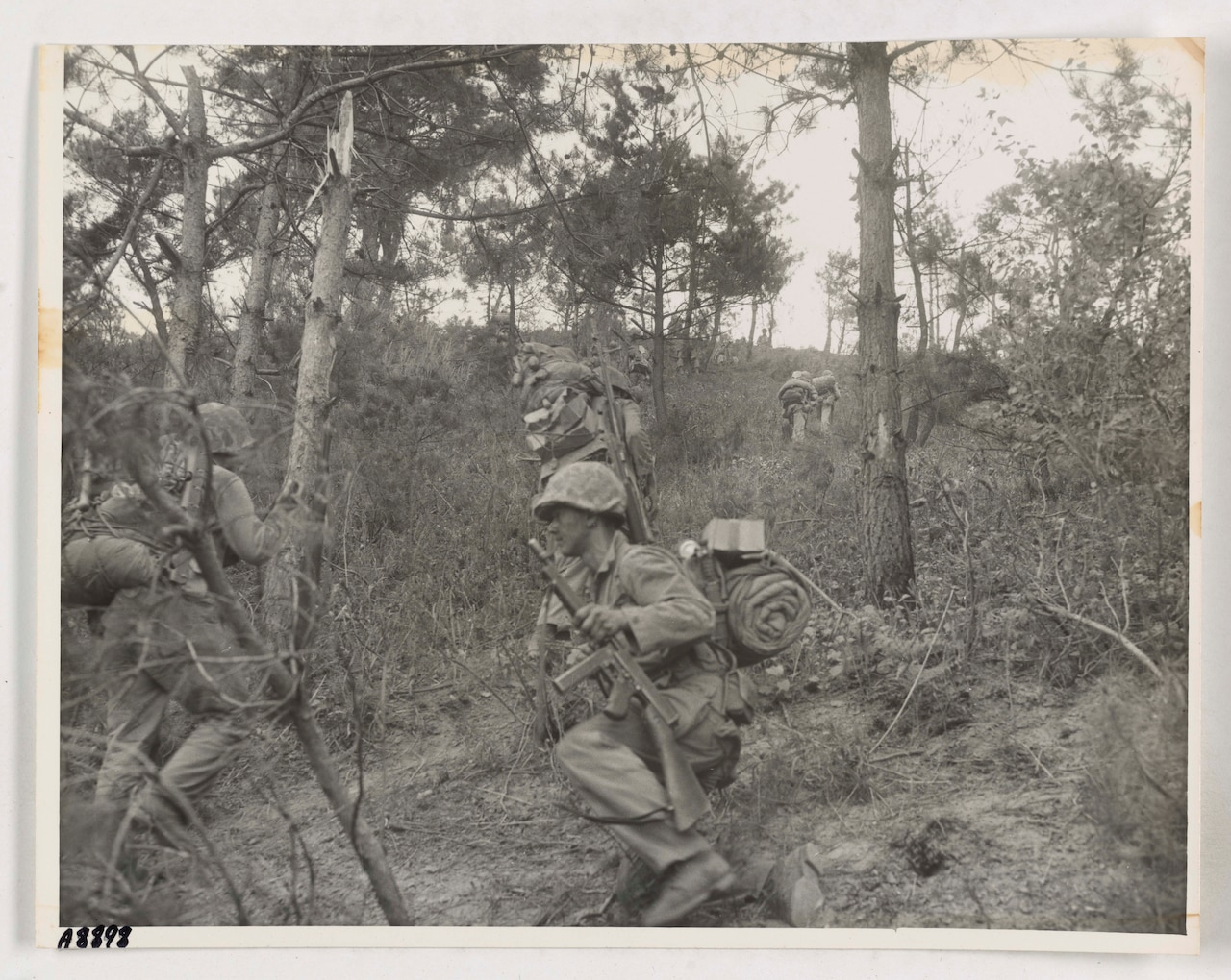 Men in combat uniform make their way up a heavily forested hill.