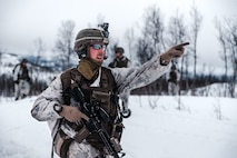 U.S. Marines with Marine Rotational Force Europe 21.1 (MRF-E), Marine Forces Europe and Africa, fire down range during a company live-fire attack as part of Exercise Arctic Littoral Strike in Blåtind, Norway, March 30, 2021