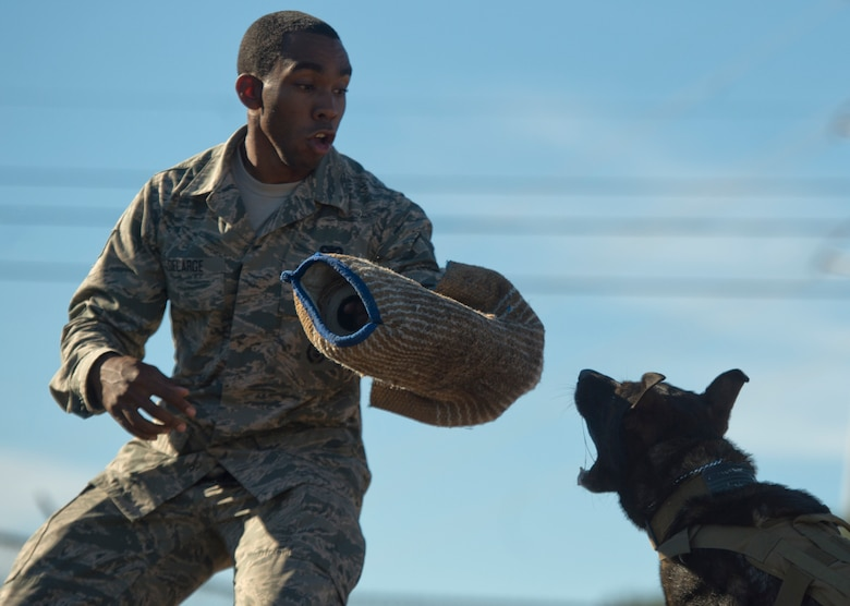 Staff Sgt. Sharif DeLarge, a military working dog handler from the 802nd Security Forces Squadron, braces for impact during a controlled aggression exercise with JJany at Joint Base San Antonio-Lackland. Devine and military working dog handlers assigned to JBSA-Lackland fulfill daily law enforcement requirements or train to remain mission-ready. (U.S. Air force photo/Staff Sgt. Vernon Young Jr.)