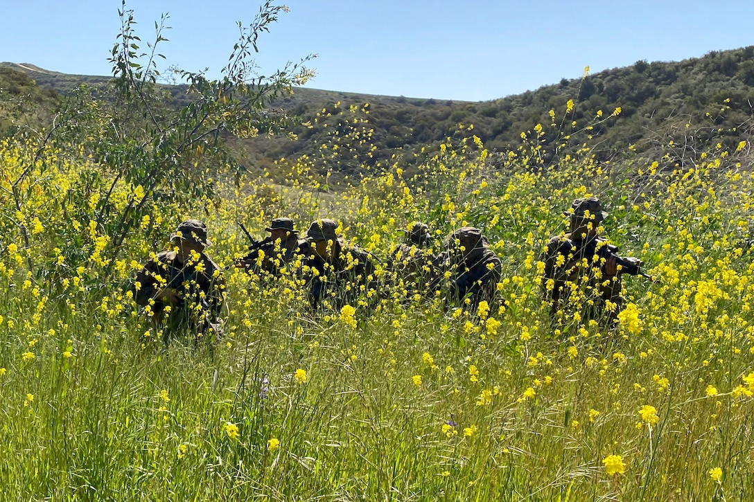 Marines crouch in a field, obscured by tall yellow flowers.
