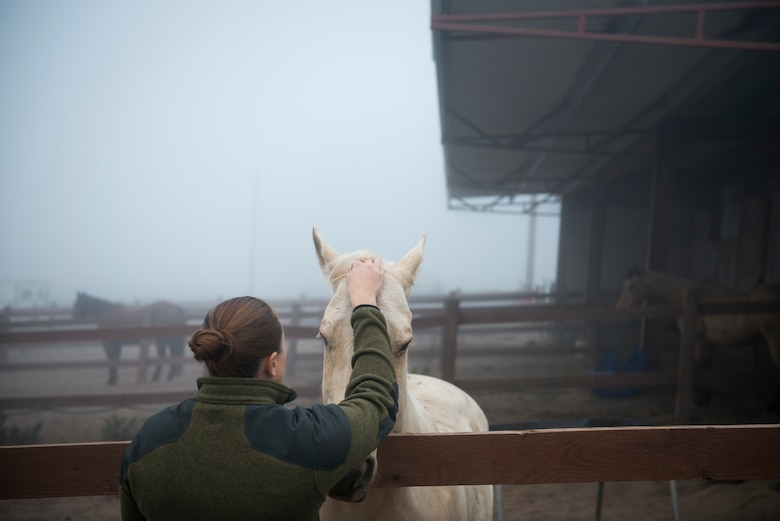 Along with doing the daily morning tasks like preparing the food and water for the horses, Reserve Staff Sgt. Lauren Daniels makes sure she's able to spend some time to bond with them. Often she and the other patrolmen create a relationship with the horses to the point where the horses become almost like family. (U.S. Air Force photo/Staff Sgt. Andrew Lee)