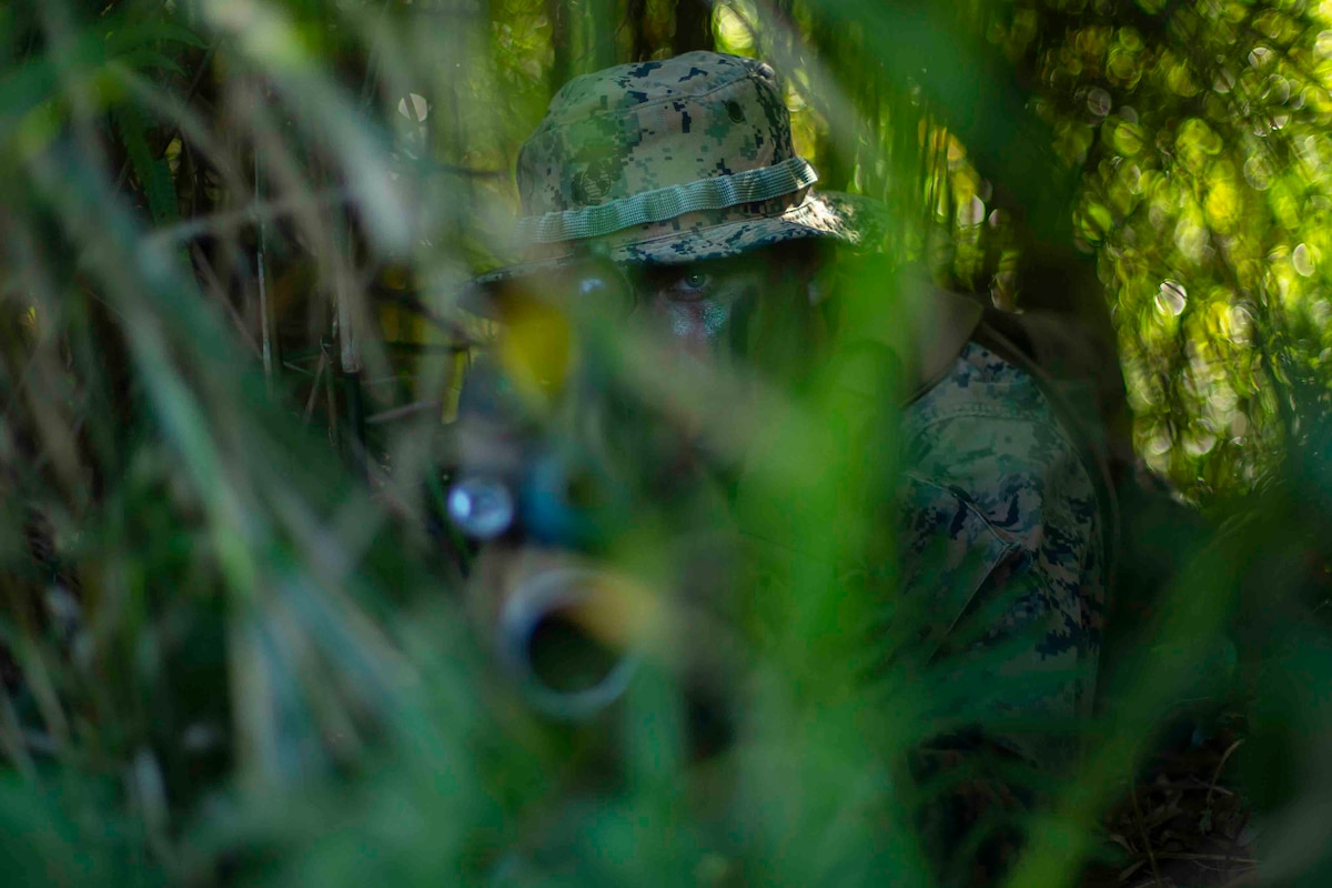 A Marine holds a weapon while camouflaged behind green brush.