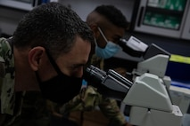Two men look into microscope