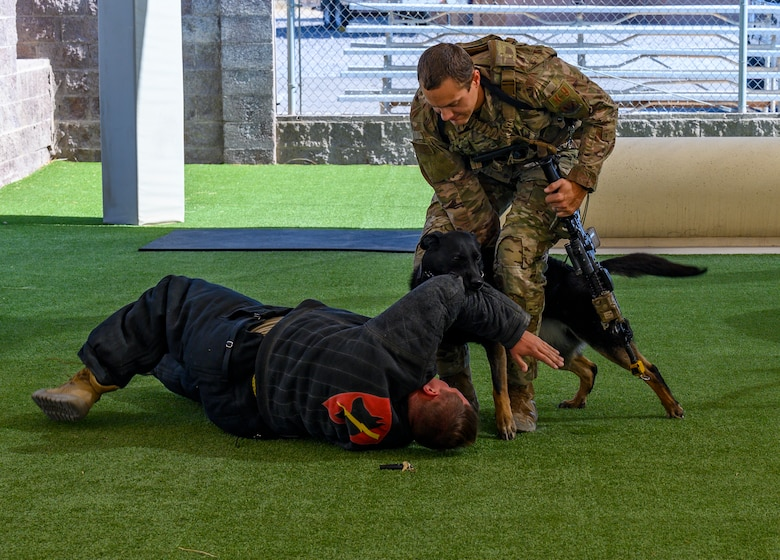 Dog bites Airman during training exercise.