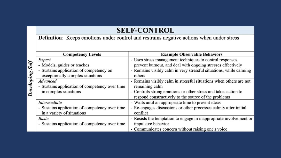 Graphic showing competencies that fall under developing self, which include accountability, perseverance, communication, decision making, information seeking, flexibility, resilience, initiative, and self-control.