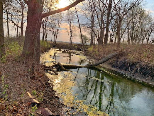 Evening sunlight falls on Trout Creek at Wright-Patterson Air Force Base on April 8. The 88th Civil Engineer Group's Environmental Management Branch planted native seedlings around the creek for Earth Day in efforts to foster pollinators. (Photo by Danielle Trevino)