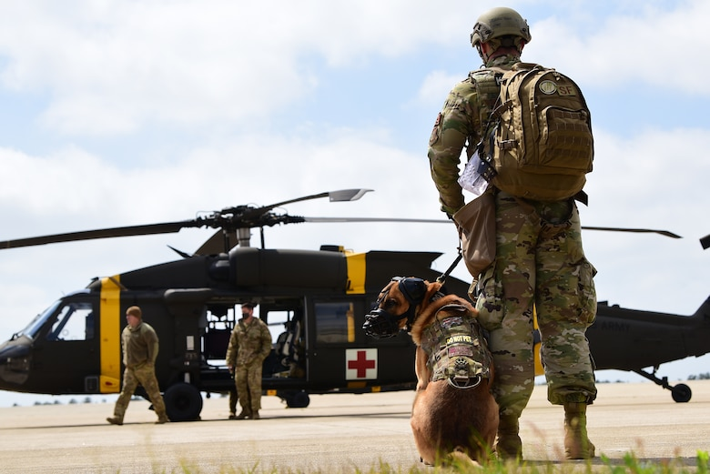 Senior Airman Austin West, 8th Security Forces Squadron military working dog handler, and MWD Bonus, wait their turn for familiarization training during a joint medical evacuation training event at Kunsan Air Base, Republic of Korea, April 13, 2021. The handlers gradually exposed the MWDs to the helicopters to familiarize them with the noises and vibrations to reduce their anxiety while flying. (U.S. Air Force photo by Senior Airman Suzie Plotnikov)