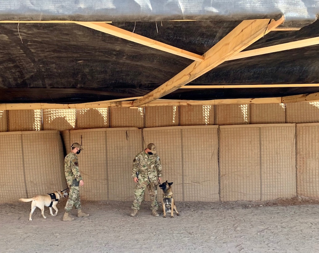 U.S. Air Force Staff Sergeants Dakota Farrow and Patrick Saddoris, 726th Expeditionary Air Base squadron military working dog handlers, walk with their K-9, MWDs Max and Benny at Camp Chabelley, Djibouti, April 15, 2021. One of the biggest accomplishments for the SFS unit was establishing a brand new MWD compound prior to being located out of a pop up tent for two months. (Courtesy photo by Maj. Tim O'Rouke)