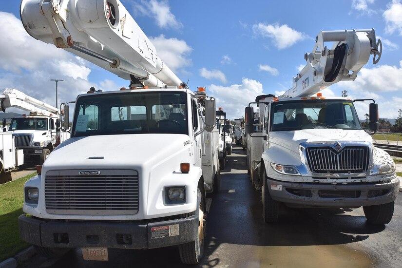 A fleet of electric work trucks sit in a parking area.