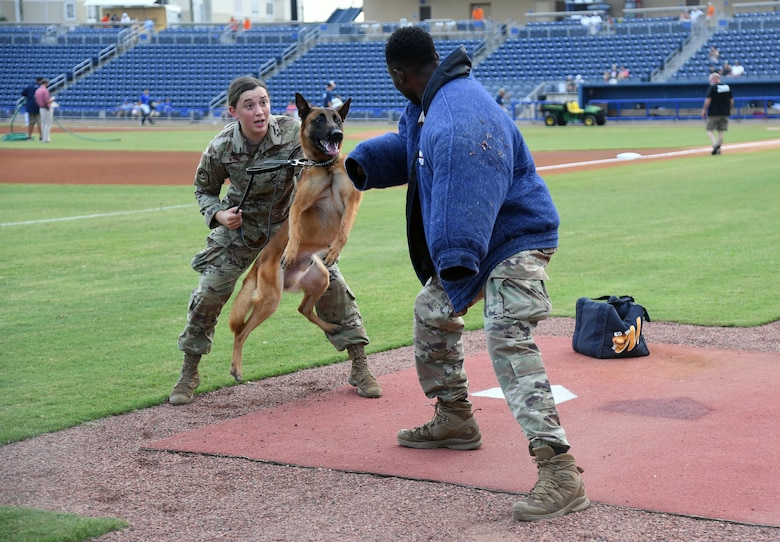 """U.S. Air Force Senior Airman Ryan Wood and Staff Sgt. Victor Henderson, 81st Security Forces Squadron military working dog handlers, and Victor, 81st SFS military working dog, participate in a demonstration at the MGM Park during a Biloxi Shuckers Minor League Baseball team pre-game festivities in Biloxi, Mississippi, Aug.1, 2021. The """"Bark in the Park"""" themed baseball game invited fans to attend the game with their dogs. (U.S. Air Force photo by Kemberly Groue)"""