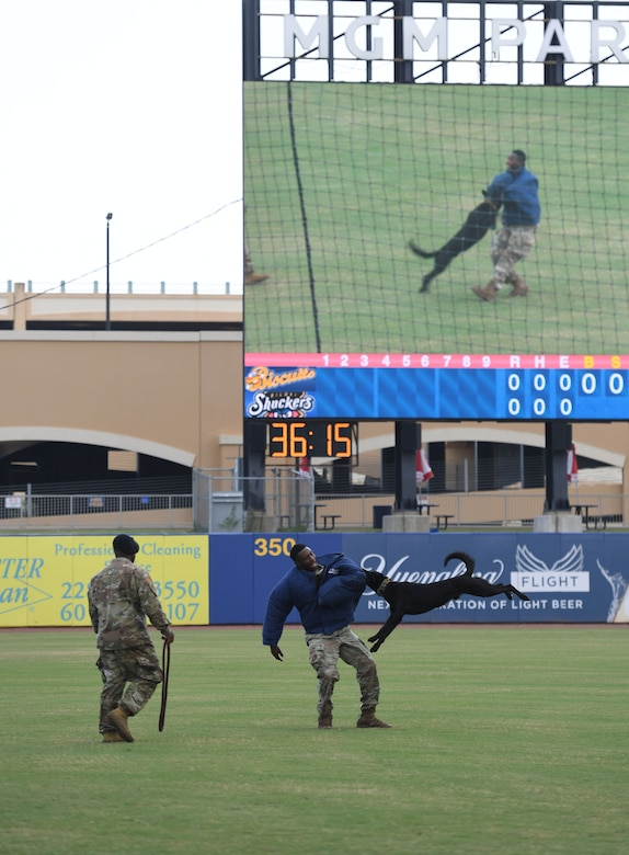 """U.S. Air Force Tech. Sgt. LaQuan Conner, 81st Security Forces Squadron military working dog kennel master, Staff Sgt. Victor Henderson, 81st SFS military working dog handler, and Bbasso, 81st SFS military working dog, participate in a demonstration at the MGM Park during a Biloxi Shuckers Minor League Baseball team pre-game festivities in Biloxi, Mississippi, Aug. 1, 2021. The """"Bark in the Park"""" themed baseball game invited fans to attend the game with their dogs. (U.S. Air Force photo by Kemberly Groue)"""