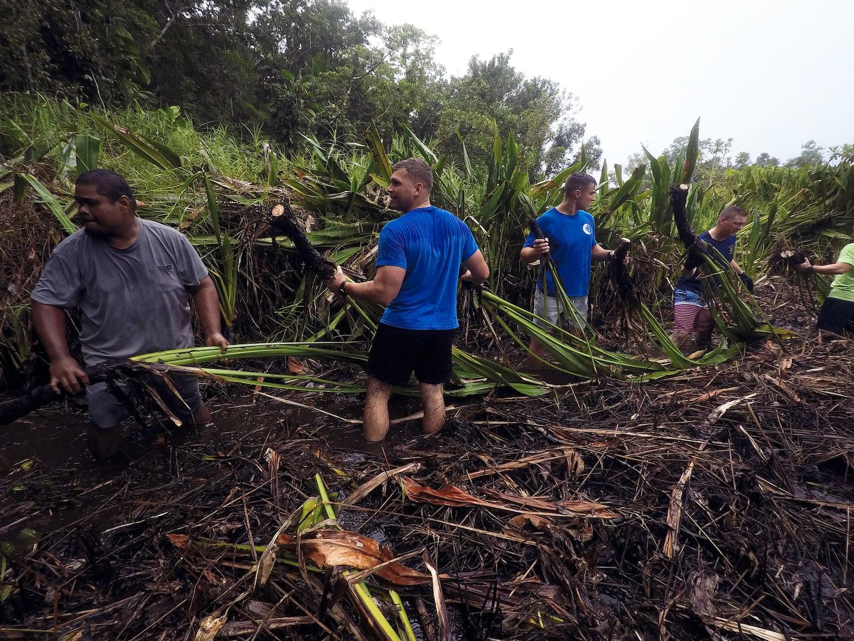 Task Force Koa Moana Participates In Lake Ngardok Cleanup