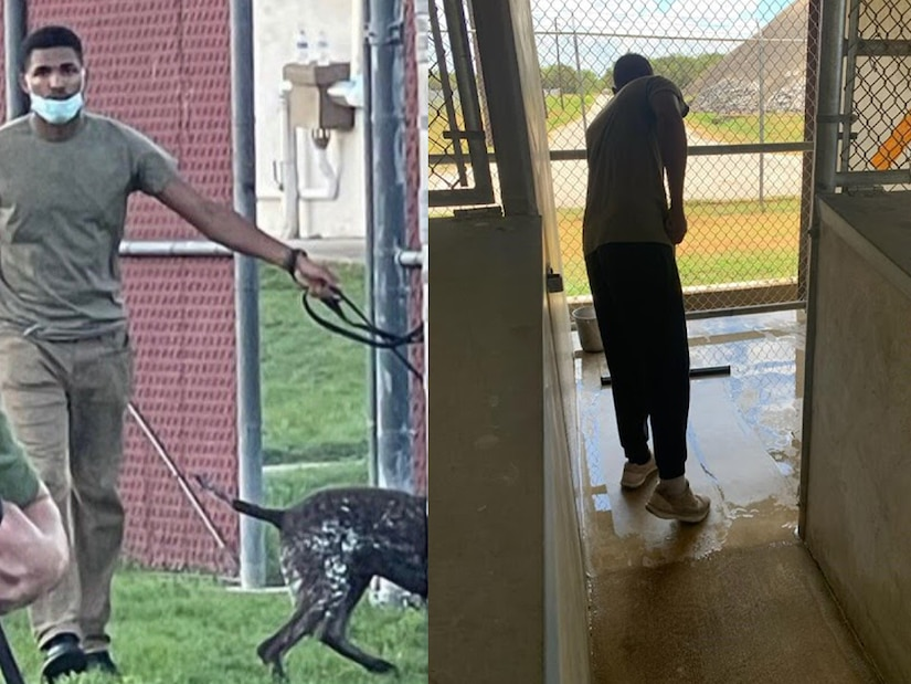 A man walks a dog. Right: A man mops a kennel floor.