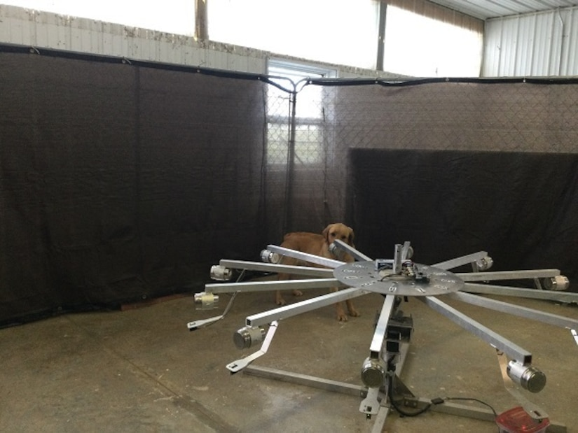 Containers hang from the spokes attached to a large wheel; a dog sniffs at one of the containers.