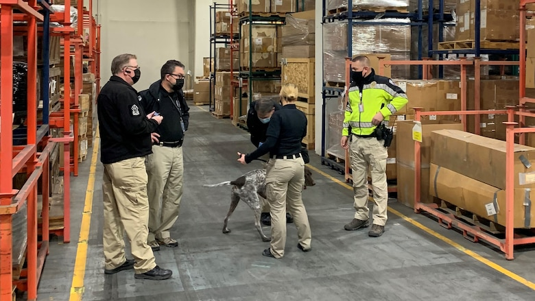 Members of the Utah Transit Authority and Transportation Security Administration explosive detection dog teams conduct a joint training exercise inside a warehouse.