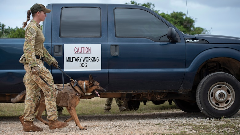 LACW Christina Smith, 2 Security Forces Squadron Tindal, Australia, military working dog handler, walks her dog during Pacific Defender 21-1 at Andersen Air Force Base, Guam, January 27 2021.