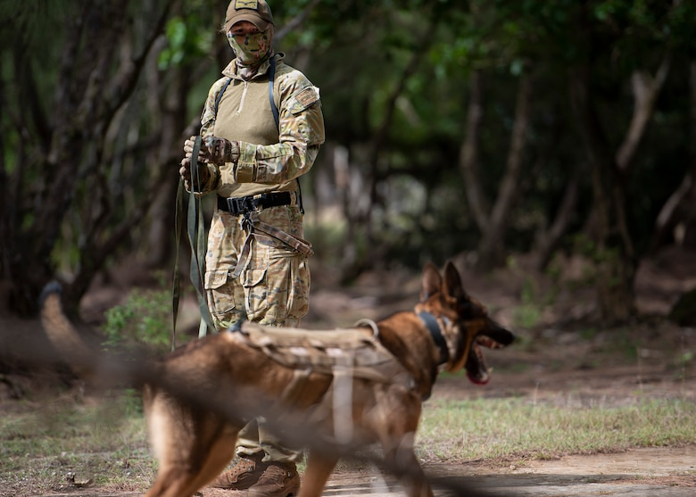 LACW Christina Smith, 2 Security Forces Squadron Tindal, Australia, military working dog handler, takes a momentary break with her dog during Pacific Defender 21-1 at Andersen Air Force Base, Guam, January 27 2021.