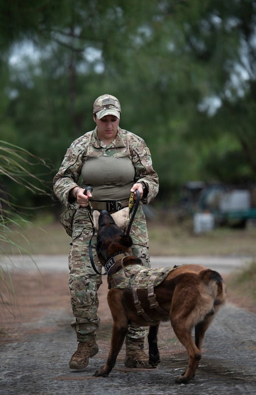 SrA Alexandra Campanaro, 36th Security Forces Squadron military working dog handler, rewards her dog, Harry, during Pacific Defender 21-1 at Andersen Air Force Base, Guam, January 27 2021.