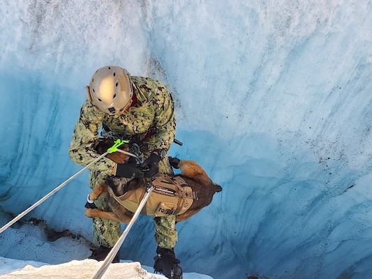 Sailor and multipurpose canine from Naval Special Warfare Group One practice crevasse self-recovery techniques during austere high-altitude environment training, at Knik Glacier, Alaska, September 11, 2020 (Naval Special Warfare Group One)