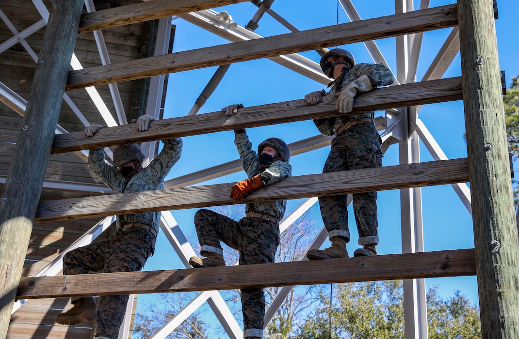 Recruits with Papa Company, 4th Recruit Training Battalion, learn how to properly rappel from the rappel tower at Marine Corps Recruit Depot Parris Island, S.C., Jan. 19, 2021. The rappel tower is used to teach the recruits to overcome fear and trust their equipment. (U.S. Marine Corps photo by Lance Cpl. Godfrey Ampong)