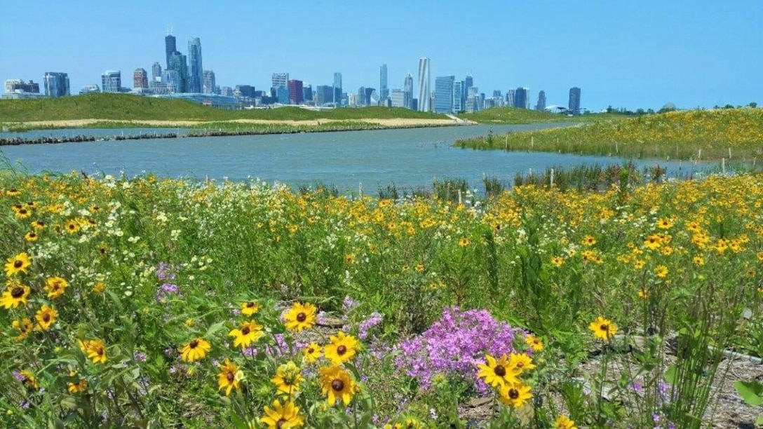 Northerly Island – Section 506