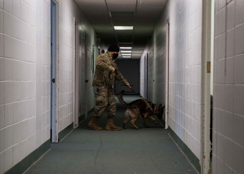 U.S. Air Force Staff Sgt. Dominic Williams, a 673d Security Forces Squadron military working dog (MWD) handler, and MWD Evelyn, a 673d SFS K-9, perform building search training during an immersion with the 673d SFS at Joint Base Elmendorf-Richardson, Alaska, Feb. 2, 2021. The tour familiarized base leadership with the 673d SFS and its role in maintaining the safety of the JBER community and security of the installation and its resources.