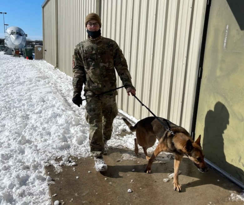 Airman 1st Class Dominic A. Fallon, a student in the Military Working Dog Handlers course, walks one of the dogs being kept warm inside at Joint Base San Antonio-Chapman Training Annex Feb. 15, 2021.