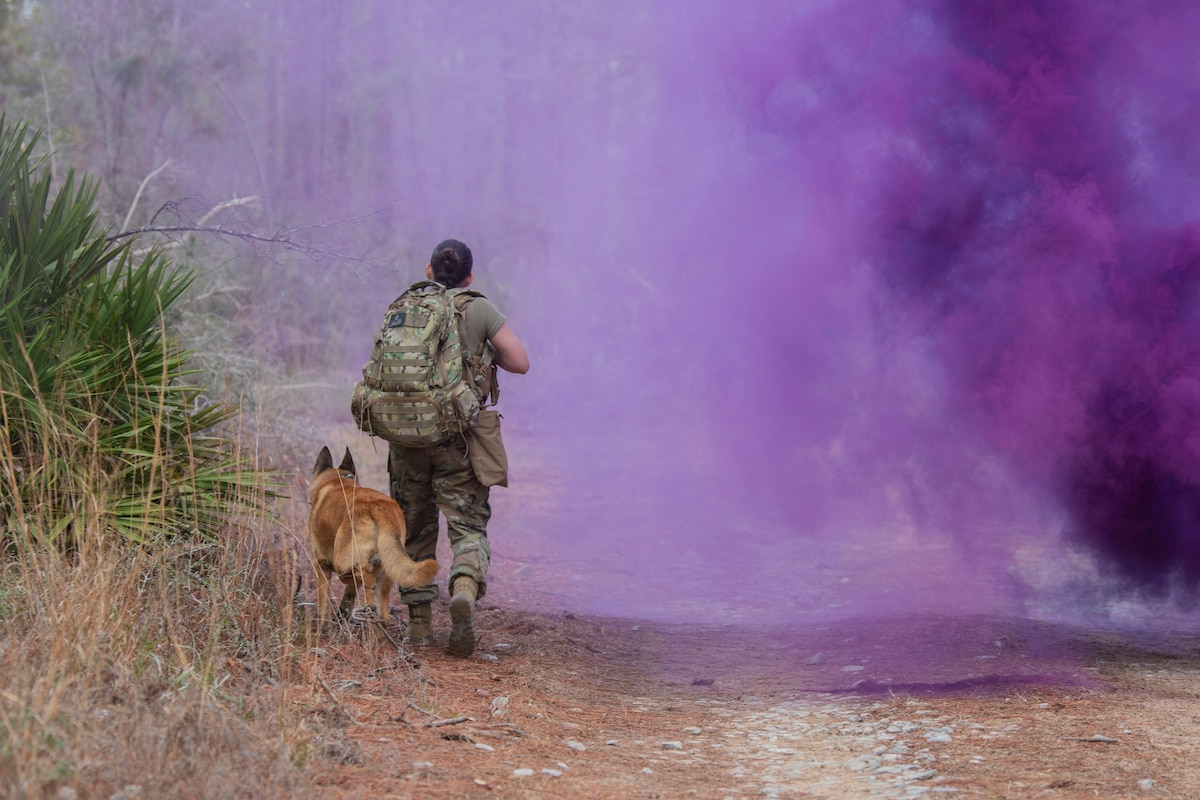 An airman and a military working dog walk through smoke along a path while training.