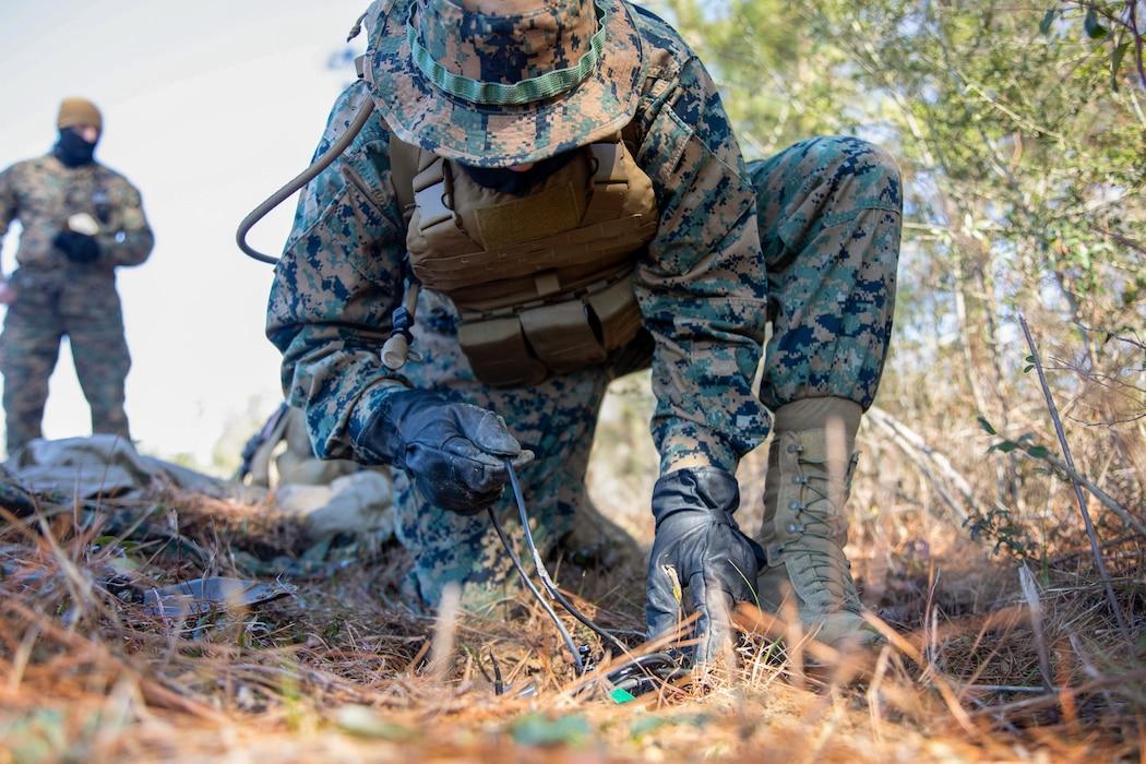 Battlespace Surveillance Company Ground Sensor Operations