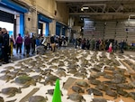 Hundreds of green sea turtles, rescued from freezing water in the Corpus Christi Bay surrounding Naval Air Station Corpus Christi, Texas, line the floor of the receiving bay at Defense Logistics Agency Distribution Corpus Christi, Texas, Feb. 17, 2021. Submitted photo.