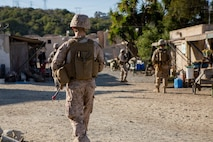 U.S. Marines with 1st Intelligence Battalion, I Marine Expeditionary Force Information Group, conduct patrols during a CounterIntelligence and Human Intelligence Tactical Exercise  at Marine Corps Base Camp Pendleton, California, Oct. 16, 2020. The CI/HUMINT TACEX integrates infantry and intelligence Marines to improve proficiency and readiness when deployed.. (U.S. Marine Corps photo by Lance Cpl. Ian M. Simmons)