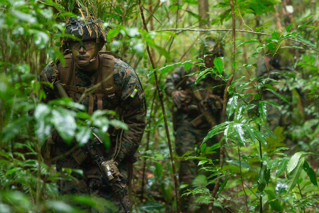 Marines patrol in a jungle.