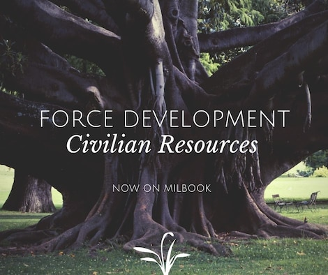 Graphic for civilian force development resources
