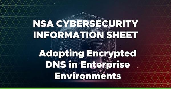 Adopting Encrypted DNS in Enterprise Environments