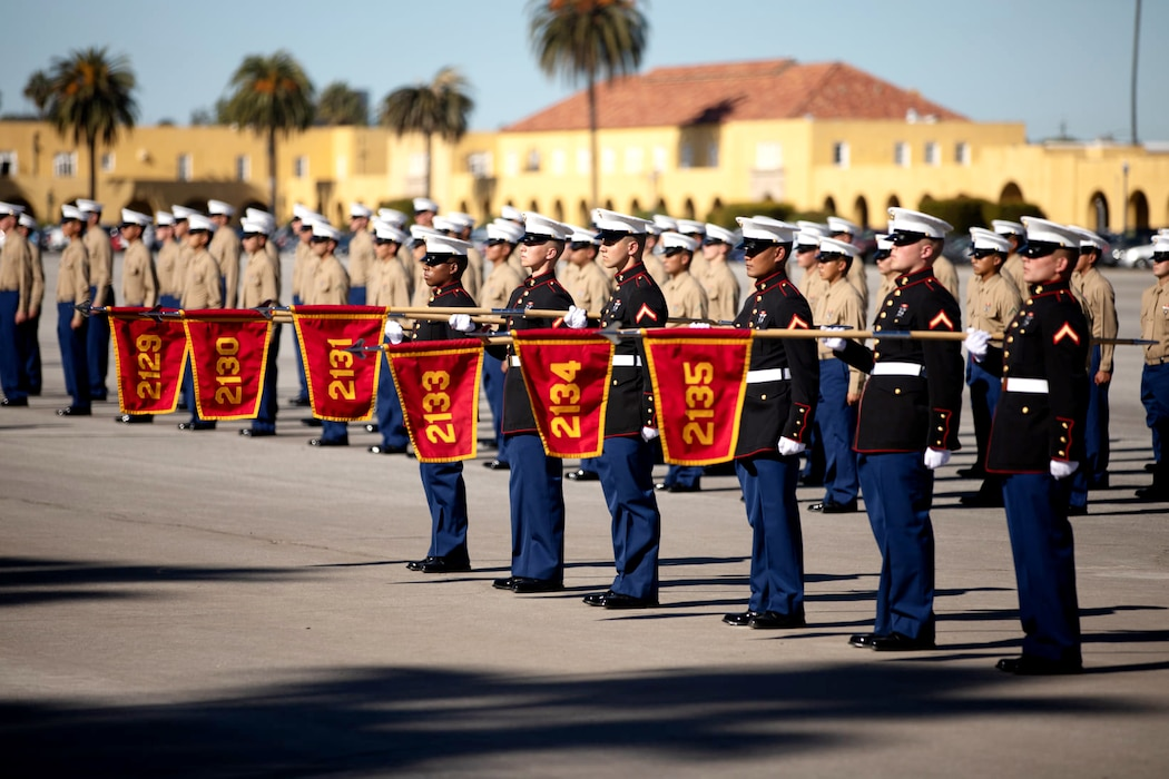 New Marines of Fox Company, 2nd Recruit Training Battalion, stand in formation during a graduation ceremony at Marine Corps Recruit Depot, San Diego, Jan. 15, 2021.
