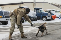 Man in uniform plays tug-of-war with his dog in a snowy parking lot