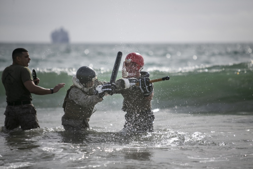 Few become Marines, fewer become Martial Arts Instructors
