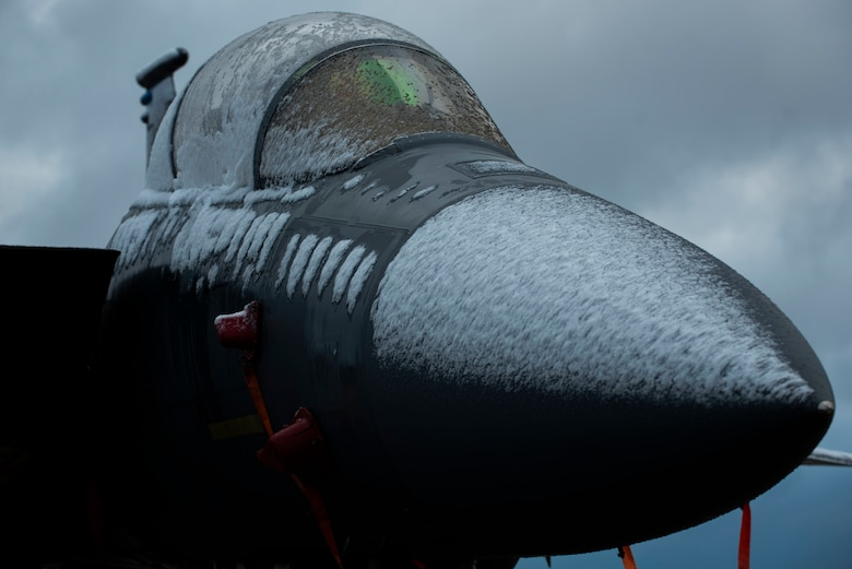 An F-15E Strike Eagle from the 334th Fighter Squadron is covered in snow at Seymour Johnson Air Force Base, North Carolina, Jan. 28, 2021.