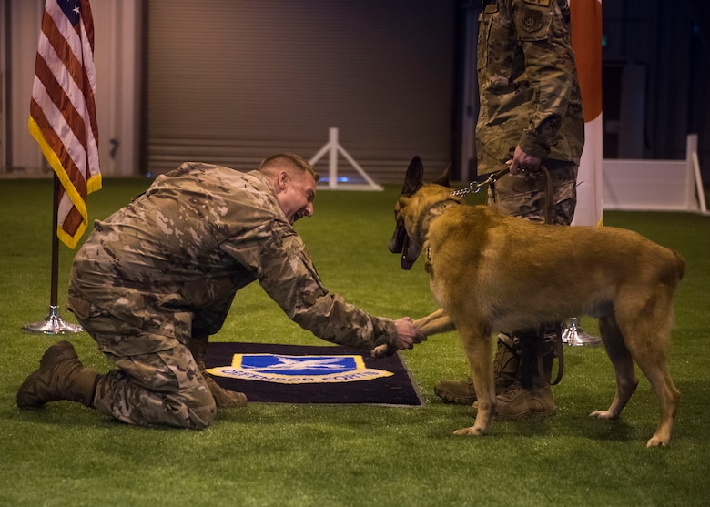 Man in uniforms shakes hands with a Military Working Dog.