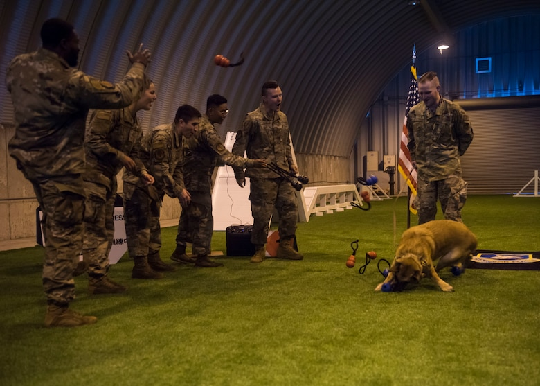 Group of military members throws multiple toys in the air, while a Military Working Dog plays.